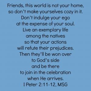I Peter 2:11-12