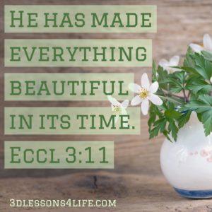 Ecclesiastes 3:11 | 3dlessons4life.com