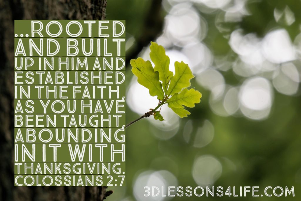 The Deeply Rooted Life | 3dlessons4life.com