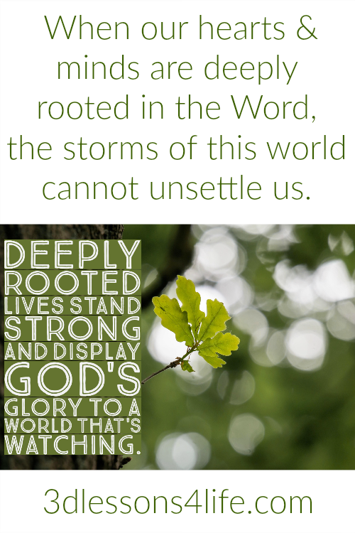 Deeply Rooted |3dlessons4life.com