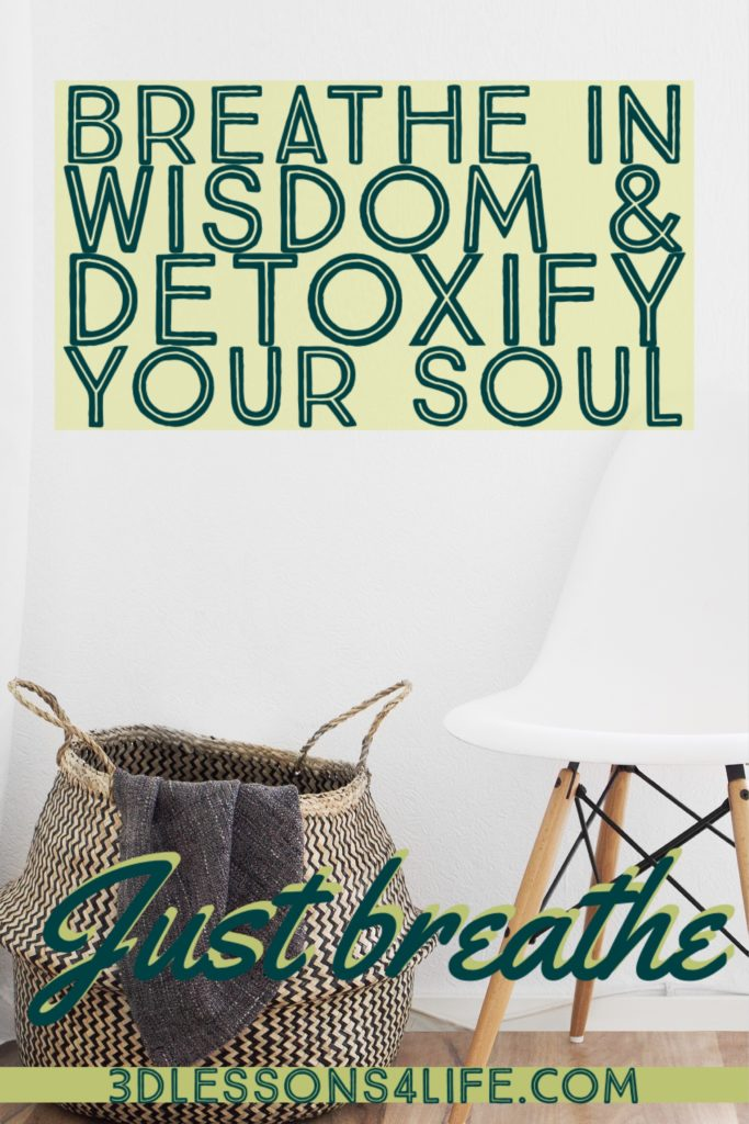 Detoxify Your Soul   Just Breathe for 31 Days - Day 16   3dlessons4life.com